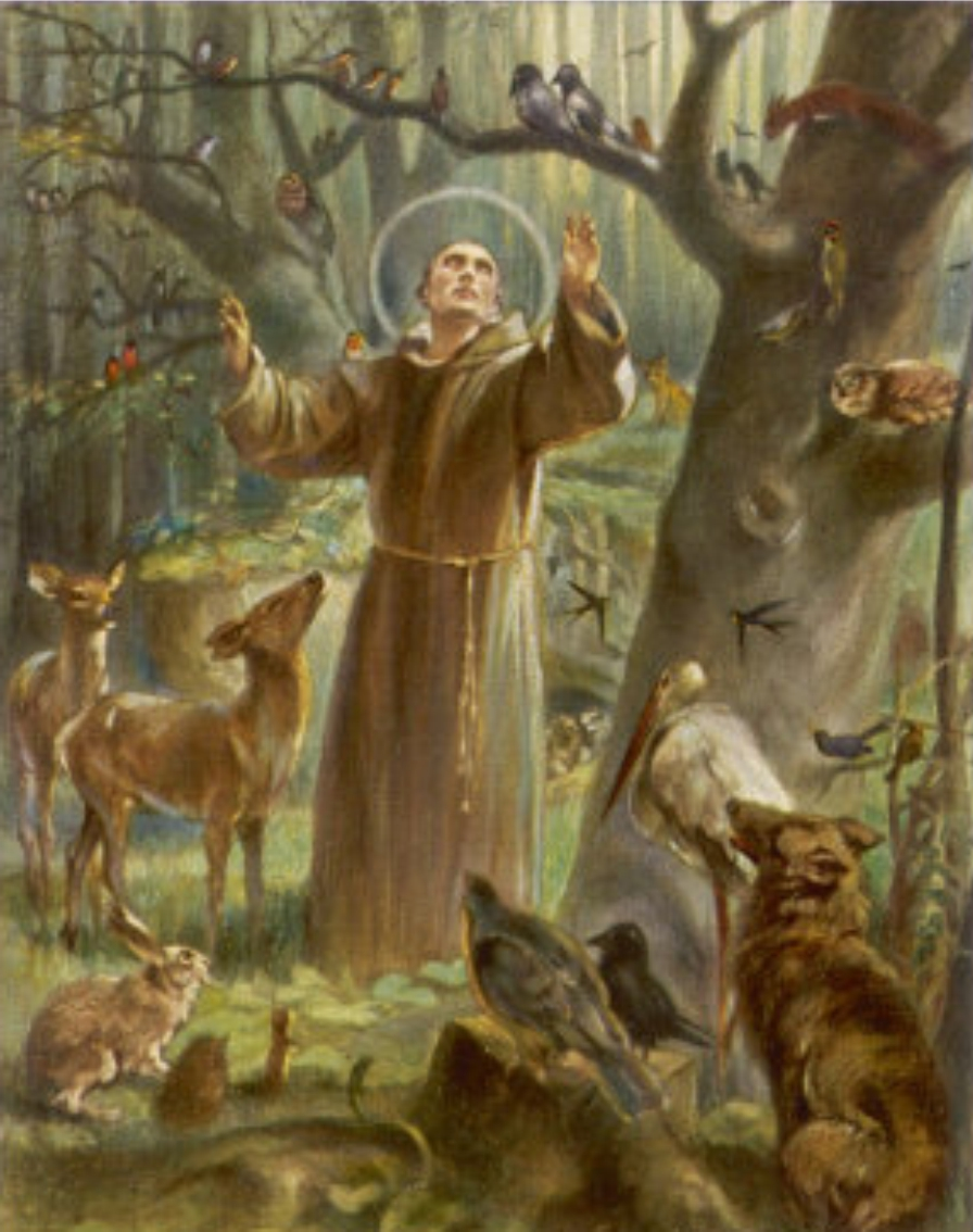 A picture of Saint Francis with animals surrounding him 3